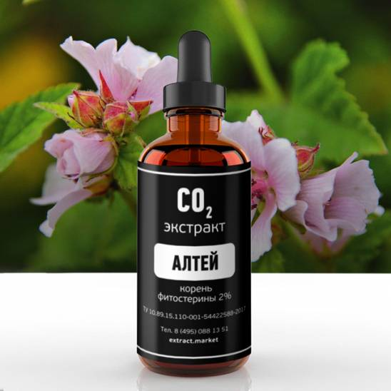 фото extract-market: СО2 экстракт алтея    -1