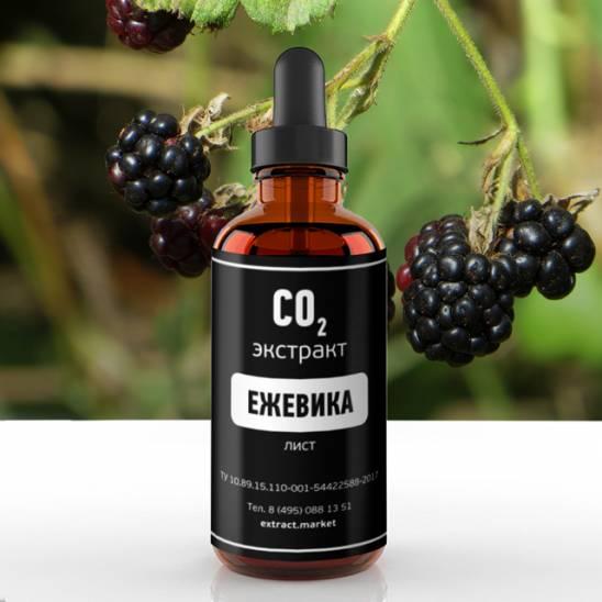 фото extract-market: СО2 экстракт ежевики  -1